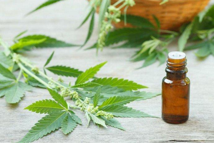 El gobierno promulgó la adhesión provincial a la ley de cannabis medicinal