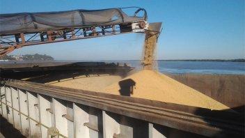 Se exportarán unos US$ 29.000 millones por la campaña agrícola récord