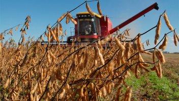 Murió un trabajador rural al ser aprisionado por una máquina cosechadora