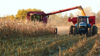 Preocupa baja de precios internacionales de los commodities agrícolas
