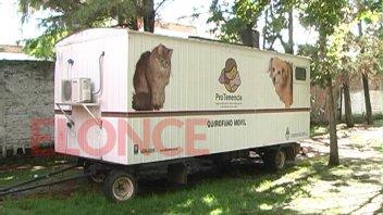 La semana próxima habrá nuevos operativos de castración de mascotas