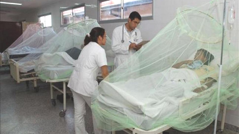 Temen por  una posible epidemia de dengue en Paraguay