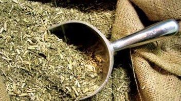 Nación fijó los nuevos precios de la yerba mate