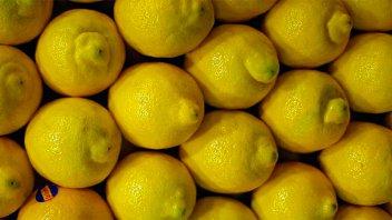 Argentina seguirá exportando limones a Japón