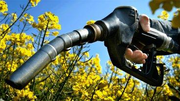EEUU anunció aplicación de sanción contra importaciones argentinas de biodiésel