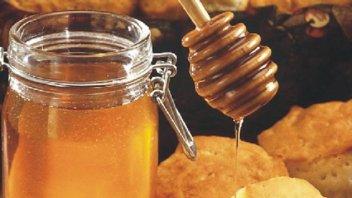 Tras una década, Argentina exportó miel fraccionada a Brasil