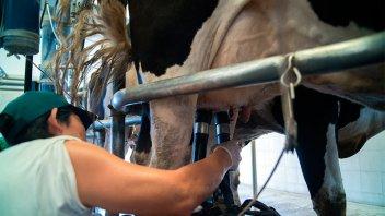 Provincia y Nación trabajan para la reconversión ambiental del sector lácteo