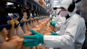 Analizan la situación del sector avícola en Entre Ríos