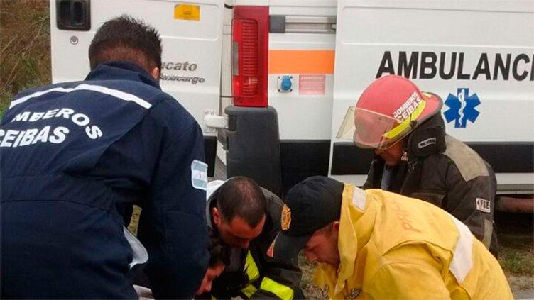 Un joven perdió la vida tras fatal despiste sobre Ruta 12 en el sur entrerriano