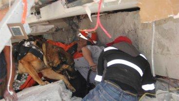 En Vivo: Trabajan para rescatar niña atrapada bajo los escombros en México