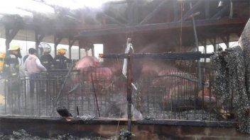 Bomberos combatieron incendio en un criadero de cerdos