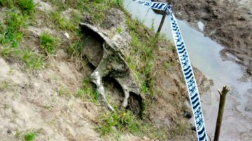 La Paz: Hallaron un yacimiento paleontológico e incautaron valiosas piezas