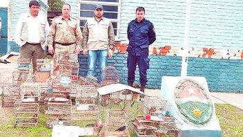 Decomisaron aves autóctonas utilizadas para la venta ilegal: Serán liberados