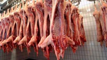 Productores porcinos piden incluir el sector en la emergencia agropecuaria