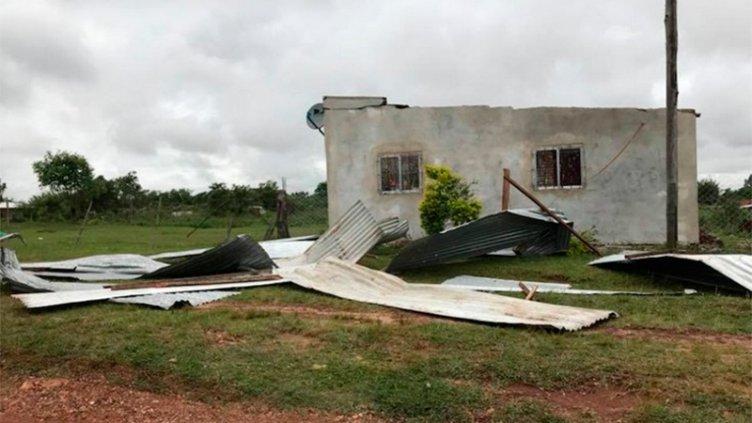 Fotos: Caída de árboles y voladuras de techos por temporal en Corrientes