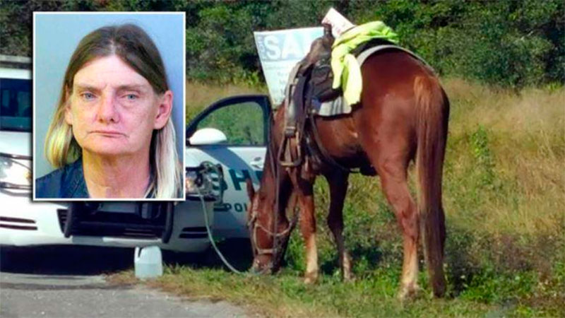 Inusual arresto: acusada de montar a caballo borracha