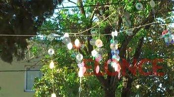 Colgaron módulos con CDs para espantar a las palomas en un jardín de infantes