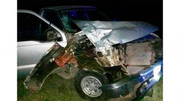 Camioneta embistió a un caballo suelto sobre la ruta: El animal murió en el acto
