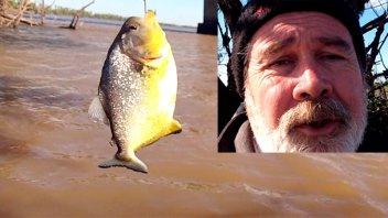 Fue a pescar, no sacó más que palometas y lo registró en un video