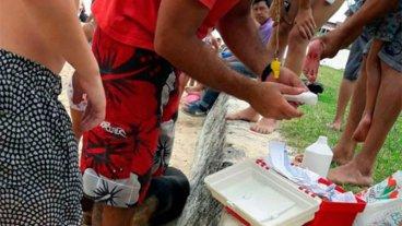 Palometas atacaron a varias personas en la playa de Victoria