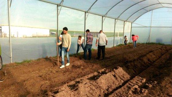 El Banco Entre Ríos sustentó un proyecto fruti-hortícola en Victoria