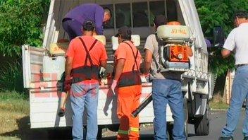 Detectan un caso de dengue importado en Paraná: Realizan bloqueo epidemiológico