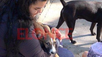 Difundieron cronograma de operativos de castración animal en barrios de Paraná