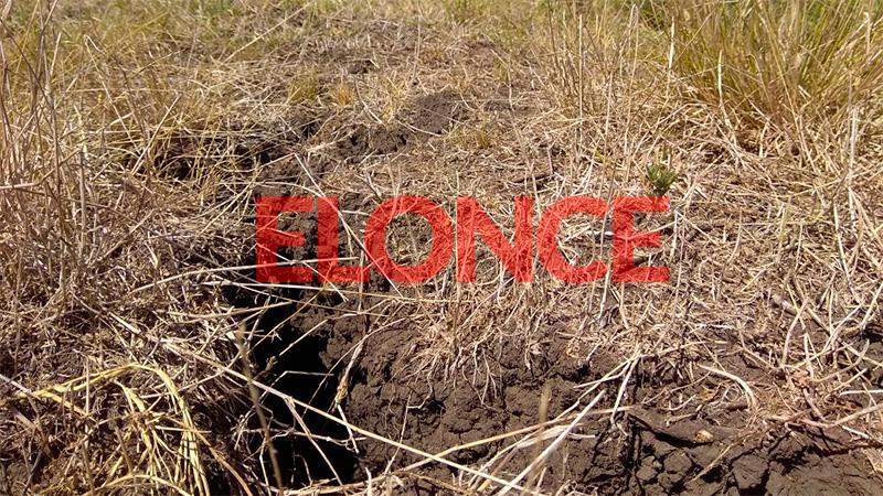 Las grietas en la tierra a causa de la tremenda sequía en Raíces (Villaguay).