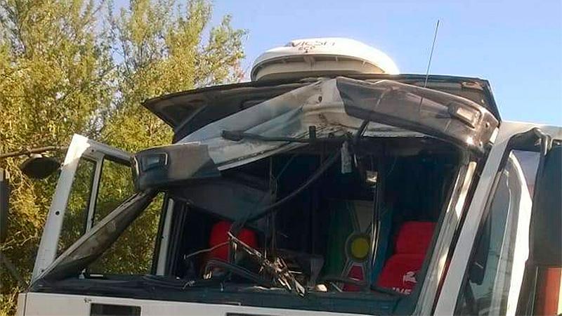 Mosquito destrozó la cabina de un camión