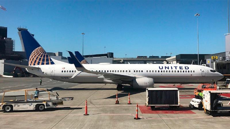 Perro muere en avión por pedido de empleado — United Airlines