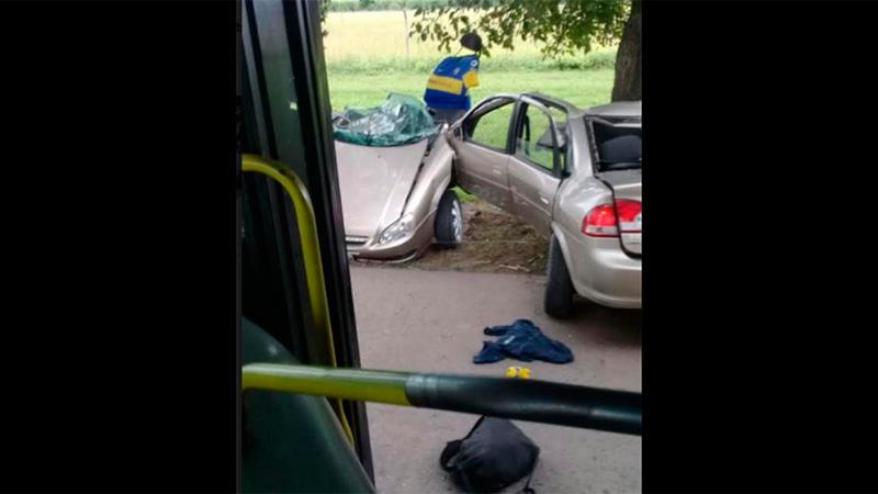 Cuatro muertos en violentísimo choque en Tucumán: El auto quedó partido al medio