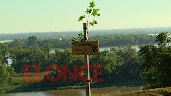 Alumnos plantaron un árbol para concientizar sobre el cuidado del medio ambiente
