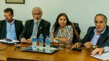 Diputados radicales proponen implementar la reforma política a partir de 2023