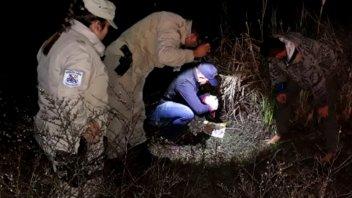 Concepción del Uruguay: Hallaron marihuana oculta entre las malezas