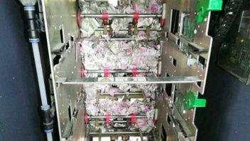 Ratas se comieron 18 mil dólares de un cajero automático