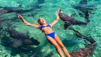 Una instagramer sufrió un ataque de tiburón en medio de una sesión de fotos