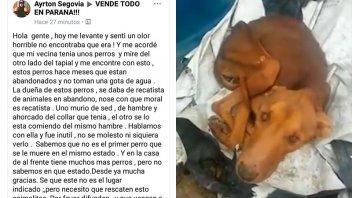 Salud Animal Municipal desmiente maltrato de una mujer hacia mascotas