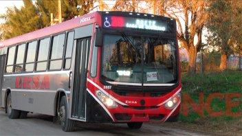 Transporte urbano: se levantó el paro y se restableció el servicio nocturno