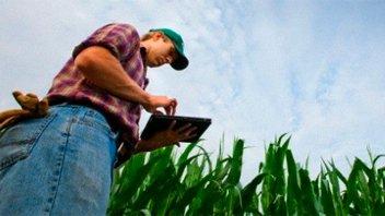Extendieron el plazo del Censo Agropecuario