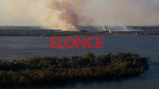 Video y fotos: Alarma por el incendio de un campo cerca de la Ruta 168