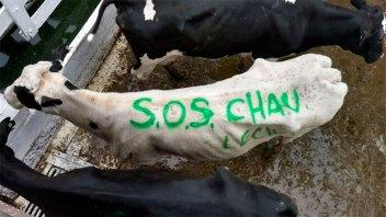 Productores protestaron por los bajos precios que cobran por litro de leche