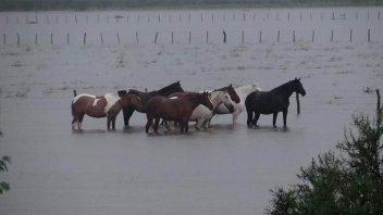 La posibilidad de lluvias sigue latente: Cuándo cambiaría el panorama