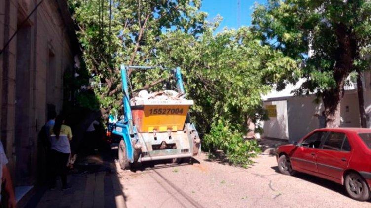 Video: Un camión con volquete subió a la vereda y chocó contra un árbol
