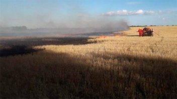 Bomberos de Nogoyá advierten por el constante incendio de campos