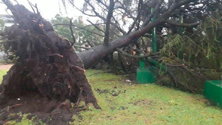 Una tremenda tormenta azotó Basavilbaso: Impresionantes imágenes