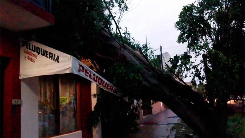 Graves consecuencias por la tormenta en Paraná: Piden precaución al circular