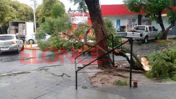 Las fotos muestran los daños que causó la tormenta en Paraná