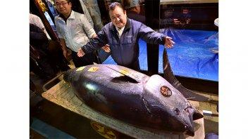 Un atún de 278 kilogramos alcanzó el precio récord de 3,1 millones de dólares