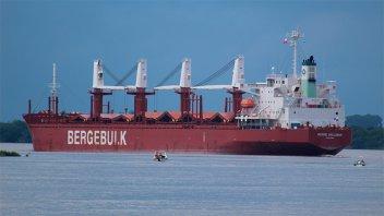 Partió el primer buque del año con madera de pino hacia China