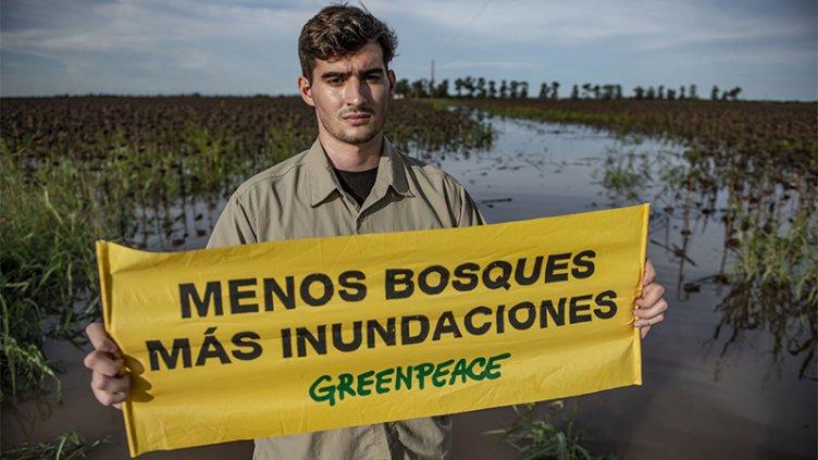 Activistas de Greenpeace frenaron una topadora en El Impenetrable